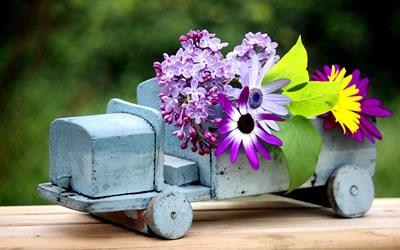 Blumen kreutz gartenmarkt floristik hochzeits for Pflanzen lieferservice